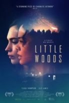 Küçük Orman – Little Woods izle tek part